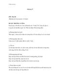 Châm cứu học (Chương 17:ĐỐC MẠCH)