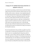 Khái quát về nền kinh tế Mỹ -  Chương 10: CÁC CHÍNH SÁCH NGOẠI THƯƠNG VÀ KINH TẾ TOÀN CẦU