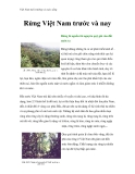 Việt Nam môi trường và cuộc sống - Phần 11