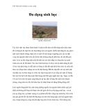 Việt Nam môi trường và cuộc sống - Phần 15