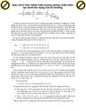 Giáo trình hình thành hiện tượng lưỡng chiết nhân tạo dưới tác dụng của từ trường p1
