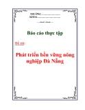 """Báo cáo tốt nghiệp: """" Phát triển bền vững nông nghiệp Đà Nẵng """""""