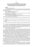 Biểu thuế Nhập khẩu hàng hóa 2011 - Chương 85