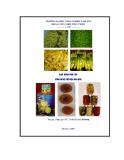 Giáo trình thực tập công nghệ chế biến rau quả - Bài 1