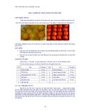 Giáo trình thực tập công nghệ chế biến rau quả - Bài 2