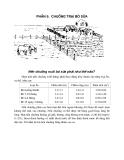 Khuyến nông chăn nuôi bò sữa - Phần 5: Chuồng trại bò sữa