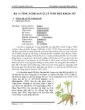 Thí nghiệm công nghệ thực phẩm 1 - Bài 1: CÔNG NGHỆ SẢN XUẤT TINH BỘT KHOAI MÌ