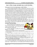 Thí nghiệm công nghệ thực phẩm 1 -  Bài 3: CÔNG NGHỆ CHẾ BIẾN QUẢ NƯỚC ĐƯỜNG