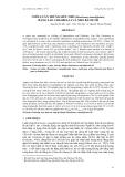 """Báo cáo khoa học: """" NUÔI LUÂN TRÙNG SIÊU NHỎ (Brachionus rotundiformis) BẰNG TẢO CHLORELLA VÀ MEN BÁNH MÌ"""""""
