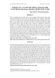 """Báo cáo khoa học: """"  NGHIÊN CỨU CẢI TIẾN HỆ THỐNG NUÔI KẾT HỢP LUÂN TRÙNG (Brachionus plicatilis) VỚI BỂ NƯỚC XANH"""""""