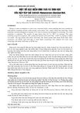 BÁO CÁO NGHIÊN CỨU KHOA HỌC KỸ THUẬT:  MỘT SỐ ĐẶC ĐIỂM HÌNH THÁI VÀ SINH HỌC CỦA RỆP SÁP GIẢ CACAO Planococcus lilacinus Ckll.