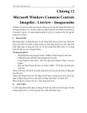GIÁO TRÌNH MICOSOFT VISUAL BASIC - Chương 12 Microsoft Windows Common Controls Imagelist - Listview - Imagecombo