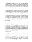 TỰ DO HÓA TRÊN THỊ TRƯỜNG CHỨNG KHOÁN VIỆT NAM - CÁC VẤN ĐỀ CHỦ YẾU ĐỐI VỚI CƠ QUAN QUẢN LÝ NHÀ NƯỚC VỀ CHỨNG KHOÁN VÀ CÁC CÔNG TY CHỨNG KHOÁN TRONG NƯỚC - Phần 9