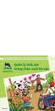 Quản lý sinh sản trong chăn nuôi bò sữa (Tài liệu thực hành cho các hộ chăn nuôi bò sữa quy mô nhỏ tại VN)
