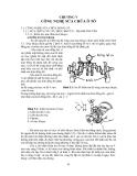 Giáo trình công nghệ bảo dưỡng và sửa chữa ô tô - Chương 5