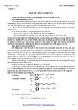 Chuyên đề nhiên liệu dầu mỡ - Chương 6