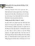 Những diễn biến trong thời đại đồ đồng ở Việt Nam (tiếp theo)