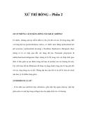 XỬ TRÍ BỎNG – Phần 2