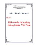 Báo cáo tốt nghiệp: Rủi ro trên thị trường chứng khoán Việt Nam