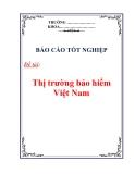 Báo cáo tốt nghiệp: Thị trường bảo hiểm Việt Nam