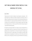 KỸ THUẬT BƠM TINH TRÙNG VÀO BUỒNG TỬ CUNG