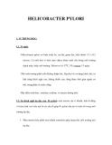 TÀI LIỆU HELICOBACTER PYLORI