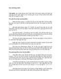 Giáo trình hình thành tỷ suất dinh lợi và các phương thức thanh toán nợ theo dư nợ ban đầu p7