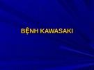 Kawasaki.CK1
