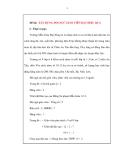 Đề tài sáng kiến: XÂY DỰNG ĐỘI NGŨ GIÁO VIÊN ĐẠT HIỆU QUẢ