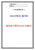 Giải phẫu bệnh: Bệnh viêm gan virus
