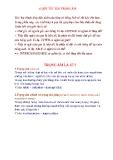 Các nguyên tắc trọng âm cơ bản( Sưu tầm )