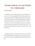 TÀI LIỆU SINH 10: CẤU TẠO TẾ BÀO Ở CÁ THỂ ĐA BÀO