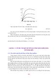 LÝ THUYẾT HÀM NGẪU NHIÊN TRONG KHÍ TƯỢNG THỦY VĂN - Chương 11