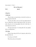 Giáo án địa lý 11 - Bài 11 Khu vực đông nam á Tiết 2