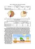 Sinh thái học nông nghiệp : Hệ sinh thái part 4