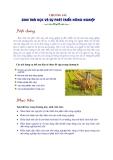 Sinh thái học nông nghiệp : Sinh thái học và sự phát triển Nông nghiệp part 1