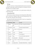 Giáo trình giới thiệu nguyên tắc lập trình trong access với blank access database p3