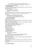 ĐIỆN QUANG THẦN KINH part 4