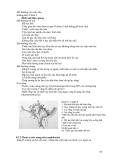 ĐIỆN QUANG THẦN KINH part 9