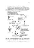 CƠ SỞ DI TRUYỀN CHỌN GIỐNG THỰC VẬT part 6