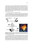 Giáo trình di truyền học và vi sinh vật ứng dụng part 10