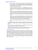 GIẢI PHÁP MẠNG KHÔNG DÂY TIÊN TIẾN CỦA NORTEL phần 2