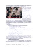 Giáo trình Dâu tằm -  ong mật part 10