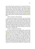 Giáo trình Nucleic Acid part 10
