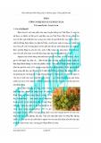 Giáo trình thực hành vi sinh ứng dụng và công nghệ lên men - Bài 8