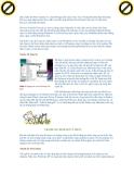 Giáo trình hướng dẫn phân tích phương pháp tối ưu window xp service part1 p4