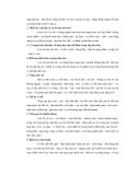 Cẩm nang nuôi chó part 6