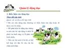 Một số vấn đề về quản lý sinh sản ở bò sữa part 3
