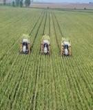 Nghiên cứu khoa học: Xây dựng mô hình kinh tế nông nghiệp tại Nhơn Nghĩa - Phong Điền - Cần Thơ