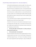 Lí luận tiền lương của C.Mác và vận dụng hoàn thiện chính sách tiền lương Việt Nam - 2